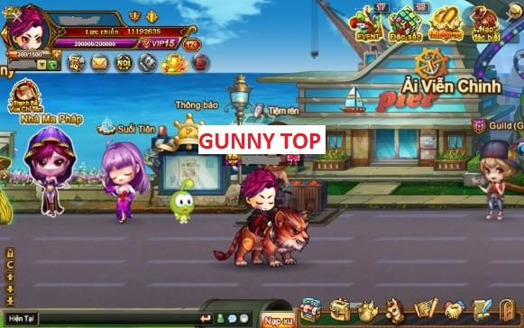 GunnyTop